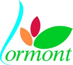 regroupement de crédit à Lormont